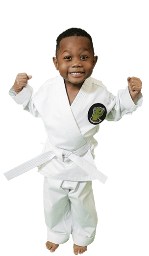 ATA Martial Arts Success Now Martial Arts - ATA Tigers